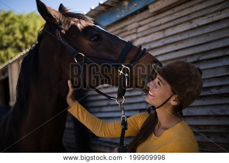 Happy female jockey stroking horse at stable