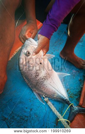 Lowly Trevally With Fishermen On The Fishing Boat