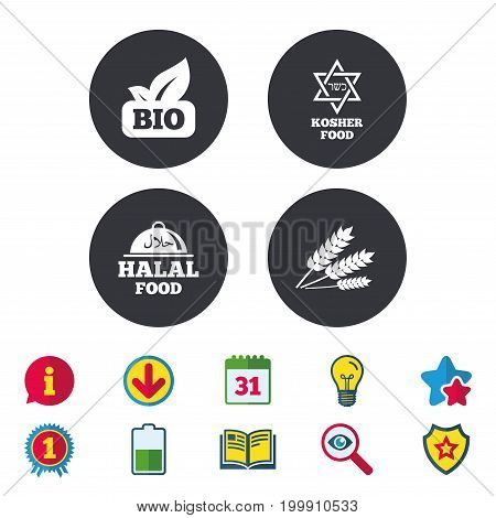 Natural Bio food icons. Halal and Kosher signs. Gluten free and star of David symbols. Calendar, Information and Download signs. Stars, Award and Book icons. Light bulb, Shield and Search. Vector