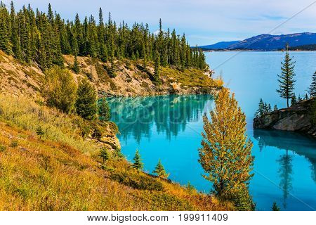 Abraham Lake is the most beautiful in the Rockies of Canada. Warm sunny day in autumn, Indian summer. The concept of ecological and active tourism