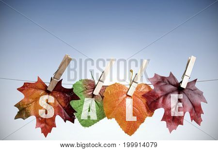 Autumn sales leaves hanging on a clothes line with background space