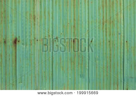 Old green rusty zinc with nutt wall background.