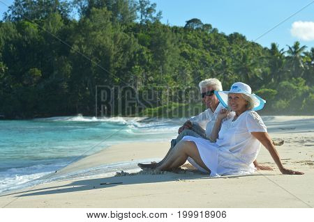Happy elderly couple sitting  on  tropical beach. Back view