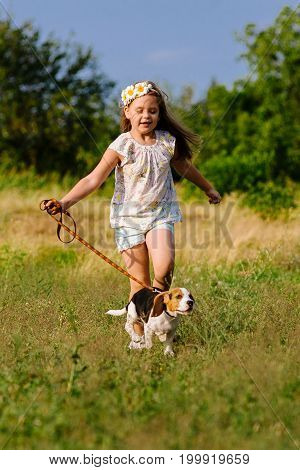 Proud little girl walking with a dog in the park. Happiness child. A dog on a leash. Purebred dog beagle young. The child bought the dog