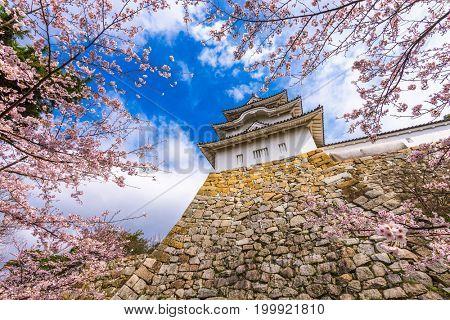 Akashi, Japan at Akashi Castle in spring.