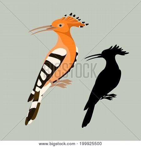 bird hoopoe vector illustration style flat silhouette