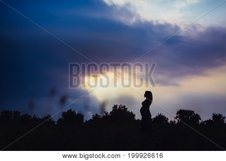 Beautiful Pregnant Woman On A Walk In Nature