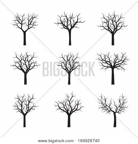 Set of naked Trees without Leaves. Vector Illustration.