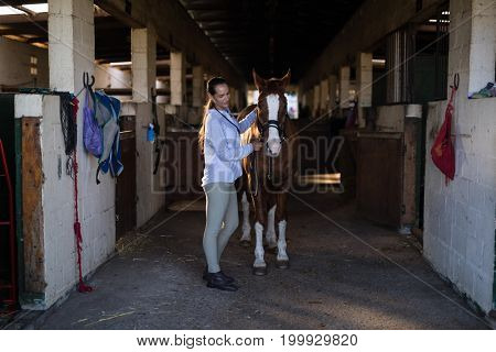Side view of female vet examining horse at stable