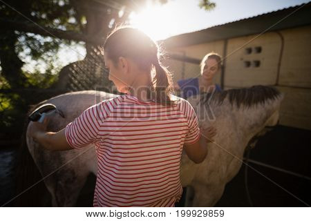 Female friends cleaning horse at barn