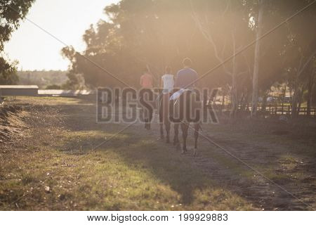 Rear view of trainer with women riding horses at barn