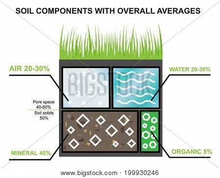 Composition of the soil. Components of the earth. Agroindustrial industry infographics. Percentage of water, minerals, oranica and air in the ground. Vector