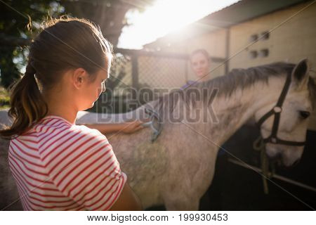 Female friends cleaning horse at barn during sunny day