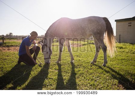 Side view of female jockey looking at horse while kneeling on grassy field