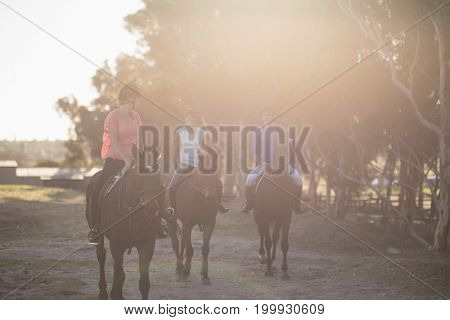 Male trainer guiding women in riding horse at barn
