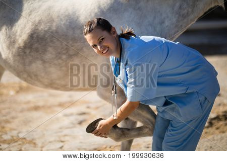 Portrait of smiling female vet examining horse hoof at barn