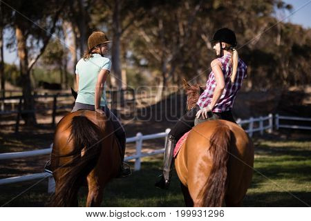 Rear view of happy female friends horseback riding on field during sunny day