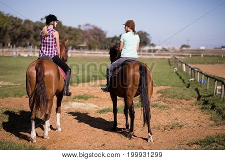 Rear view of female friends sitting on horse at paddock