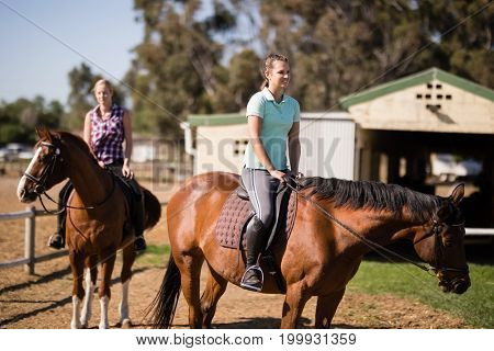 Smiling women sitting on horse during sunny day