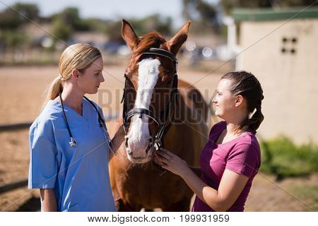 Female vet and woman looking at horse while standing on field during sunny day
