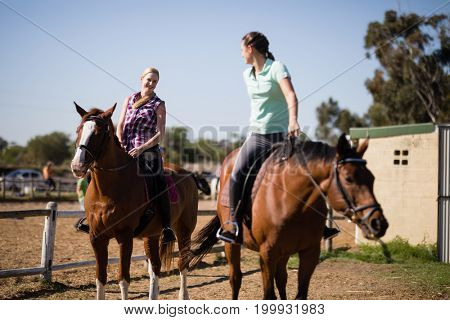 Female friends talking while sitting on horse at paddock during sunny day