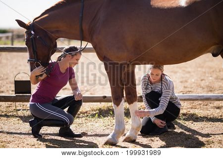 Female vet with woman looking at horse leg while crouching on field