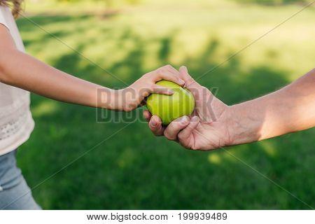 Family Holding Apple