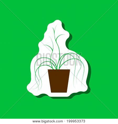 paper sticker on stylish background plant in a pot