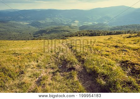 Nature landscape with mountains and rural way in grass. Beautiful scenery in the Carpathian Mountains.