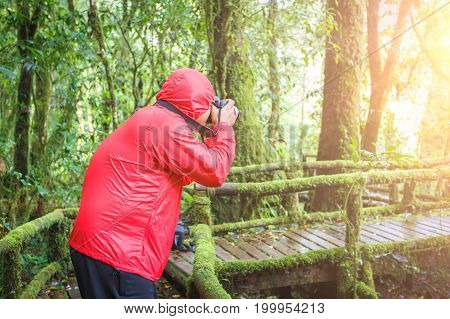 Beautiful rain forest during the rainy season at Nature Trail Doi Inthanon National Park Chom Thong Chiang Mai Thailand is a location very popular for photographers and tourists