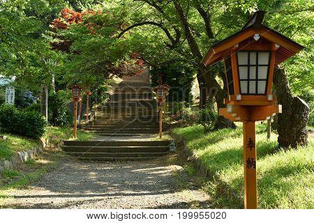 Lamp in japanese style with walk way and maple tree at red pagoda Fujiyoshida Japan.