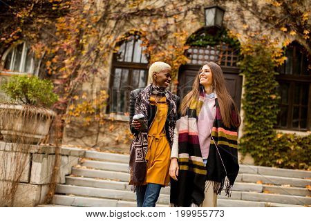 Pretty Young Multiethnic Friends Walking On Autumn Day