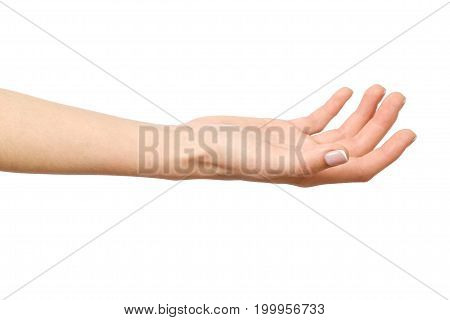 Woman's Open Palm Isolated On White