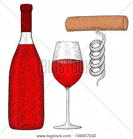 Wine set. Bottle of red wine with glass and corkscrew. Hand drawn sketch. Vector illustration isolated on white background