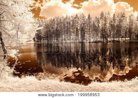 Reflections In The Lake. Infrared Image