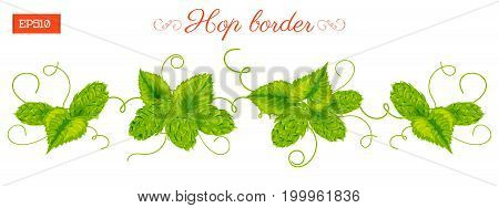 Border of leaves and cones of hops plant isolated on white Vector illustration. Hand drawing
