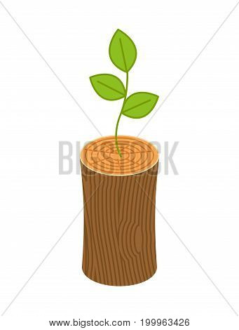 Sprout From Logs. New Life Concept. Young Plant From Wooden Billet