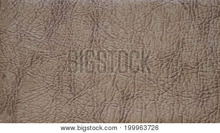 Close-up of a detailed brown leather texture