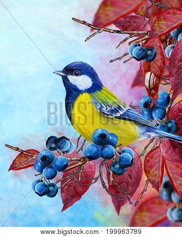 A small bird tits a branch blue berries red leaves. Bright elegant autumnal background.