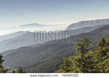 The panoramic views of the mountains and mist