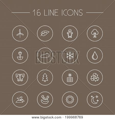 Collection Of Panda, Cloud, Mountain Elements.  Set Of 16 Nature Outline Icons Set.