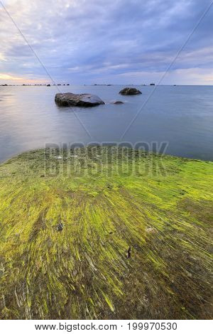 Large rocks covered with algae in sea at cloudy evening