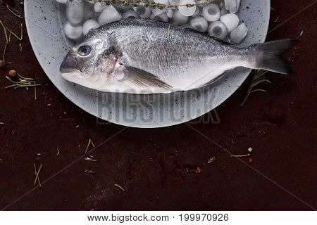Seafood restaurant background. Fresh dorado fish on ice platter on brown table. Organic cooking ingredients for healthy food. Top view, copy space