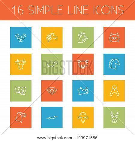 Collection Of Sheep, Mammal, Rhino And Other Elements.  Set Of 16 Zoo Outline Icons Set.