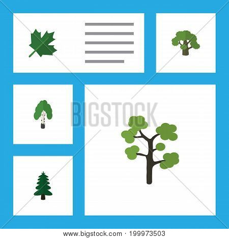 Flat Icon Ecology Set Of Tree, Oaken, Garden And Other Vector Objects