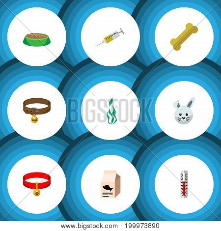 Flat Icon Animal Set Of Hound Necklace, Rabbit Meal, Fish Nutrient And Other Vector Objects