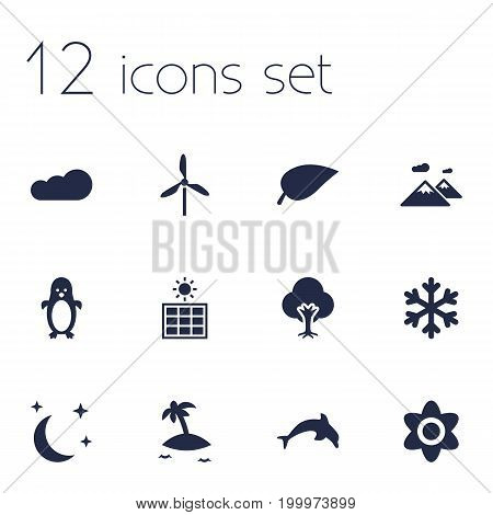 Collection Of Midnight, Pinnacle, Overcast And Other Elements.  Set Of 12 Bio Icons Set.