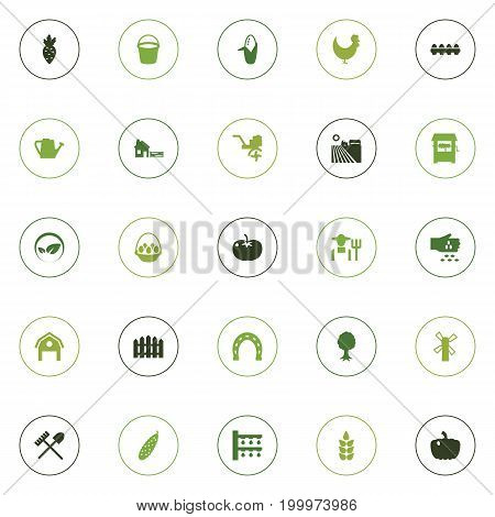 Collection Of Tray Of Eggs, Seed, Container And Other Elements.  Set Of 25 Agricultural Icons Set.