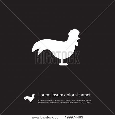 Chicken Vector Element Can Be Used For Chicken, Rooster, Cock Design Concept.  Isolated Bantam Icon.