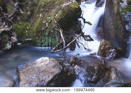 Agua en movimiento en río con hojas y ramas